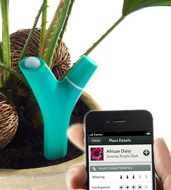 Parrot Flower Power iPhone iPad - Un Accessoire pour entretenir vos Plantes (vidéo)