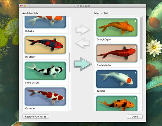 Koi Pond 3D Mac OSX Aquarium Poissons Wallpaper 3 - Koi Pond Mac - Poissons Japonais 3D en Economiseur d'Ecran (gratuit)