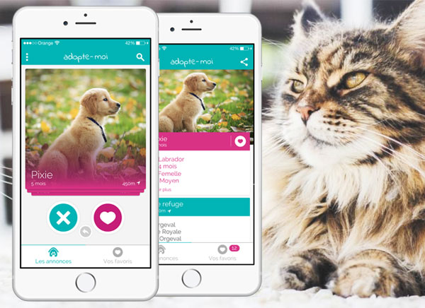 Adopte Moi Iphone Trouver Chiens Et Chats A Adopter Gratuit Maxiapple Com