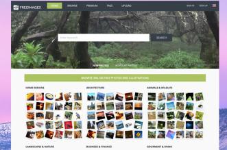 FreeImages-com-banque-images-1