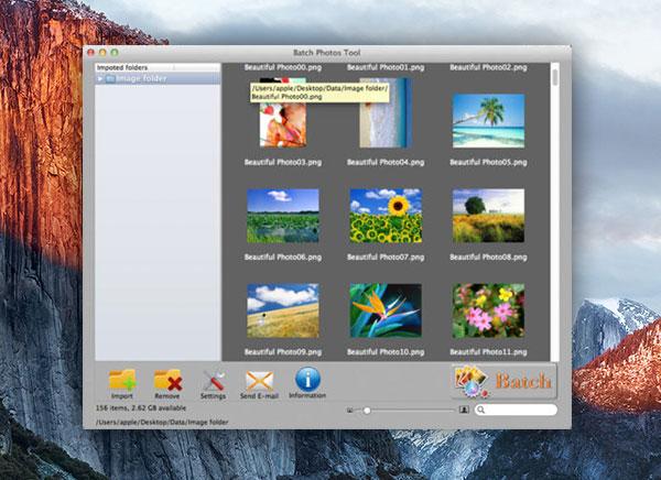 Passport Photo Maker para usuarios domésticos y profesionales