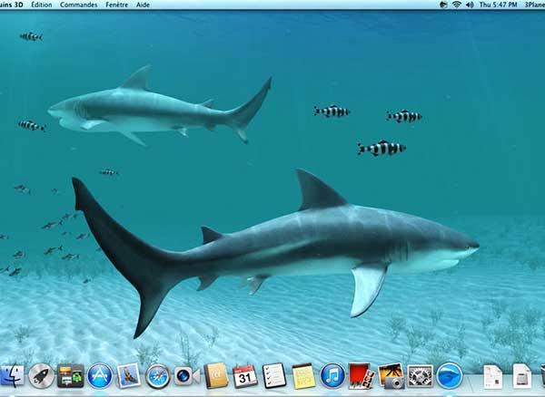 Sharks 3d Transforme Le Mac En Aquarium à Requins Gratuit
