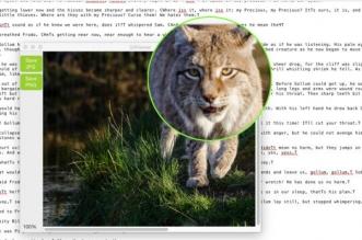 desktop lens mac macos 1 331x219 - Desktop Lens Mac - Le Zoom dans le Menu Contextuel