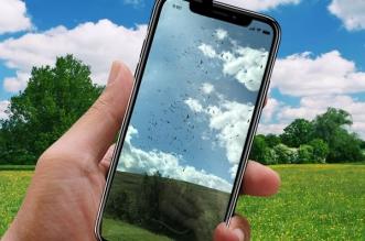 iphone video slow motion oiseaux fige 1 331x219 - Filmés avec un iPhone 8 ces Oiseaux Semblent Figés (video)