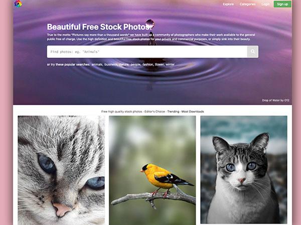 freestockphotos io banque images photo hd gratuite libre 1 - Free Stock Photos, Banque d'Images HD Libre et Gratuite