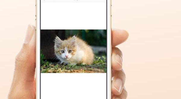 archives opens any format macpaw iphone ipad 2 600x330 - Archives iPhone iPad - Décompacteur de Fichiers aux 54 Formats (gratuit)