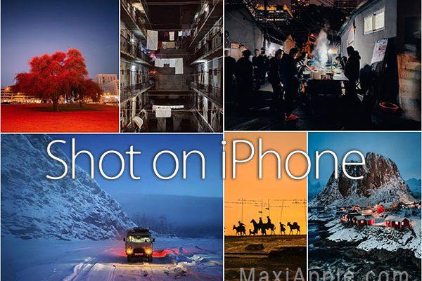 palmares concours apple iphone 11 mode nuit 2020 01 600x400 - 6 Photos Prises avec un iPhone 11 et Pro Max du Concours Apple