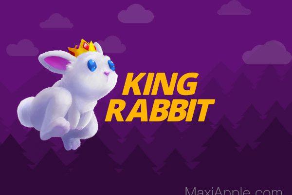 king rabbit jeu iphone ipad gratuit 1 600x400 - King Rabbit iPhone iPad - Puzzle Game pour Lapins Malins (gratuit)